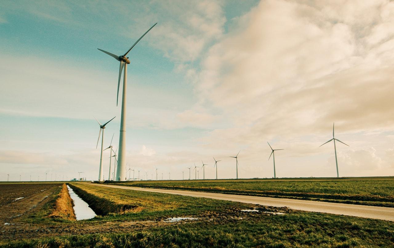 Wind farm - Samuel Barbosa da Cunha